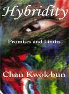 Hybridity: Promises and Limits
